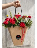 6 Rosas Provence